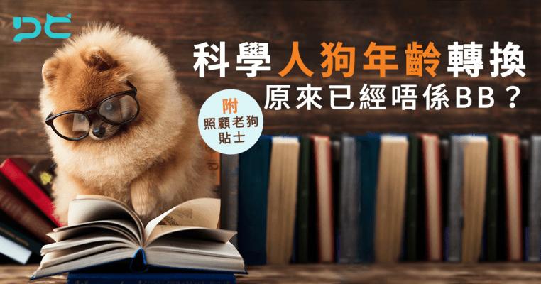 PetbleCare 寵物保險 香港 科學 人狗年齡轉換 已經唔係BB 照顧老狗貼士