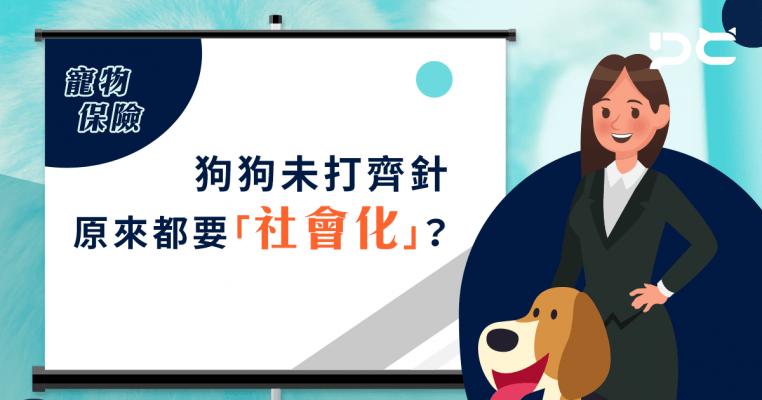 PetbleCare 寵物保險 hong kong pet insurance 寵保 寵險 狗狗未打齊針 原來都要社會化 5個月大 外出 感染 認知世界 黃金時間