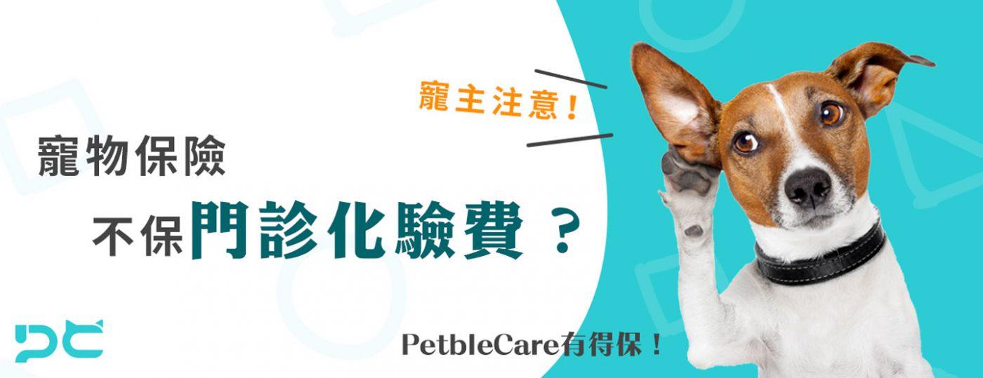 寵主注意 寵物保險不保門診化驗費 PetbleCare 寵物保險