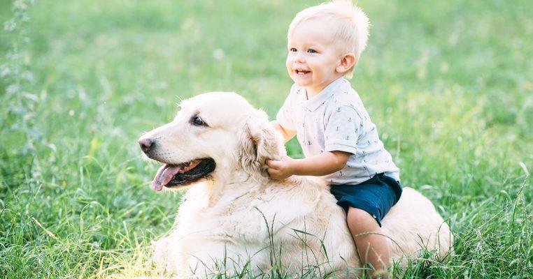 PetbleCare 寵物保險 香港 買寵物保險 貓貓 狗狗 投保 養寵好處 有益 養狗 令你心臟更健康