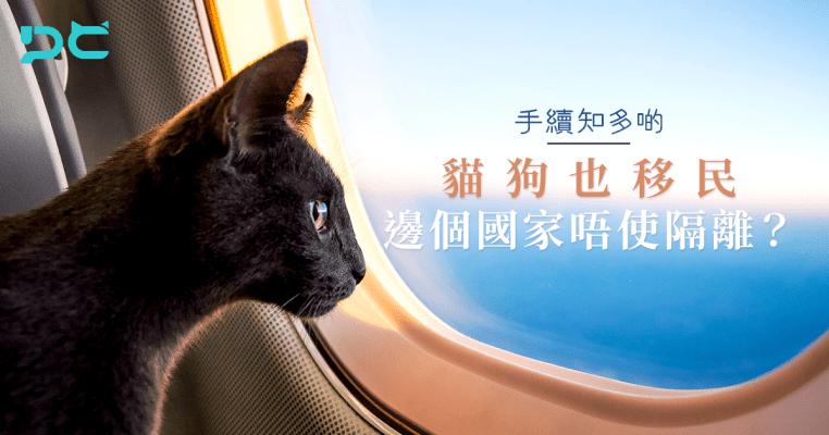 PetbleCare 寵物保險 香港 買寵物保險 貓貓 狗狗 手續 貓狗 移民 邊個國家 唔使隔離 不用隔離